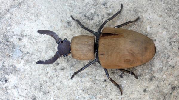 Insecte fait à partir d'un embauchoir de chaussure et d'une pince
